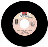 SALE ITEM - Tamlins - Don't Break Your Promise / version (Penthouse) 7""